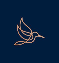 hummingbird logo design template vector image