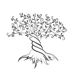 Olive tree outline curl silhouette icon vector image