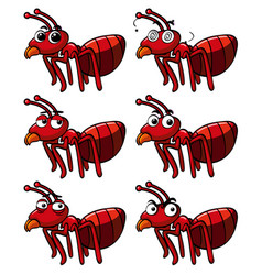 red ant with different facial expressions vector image