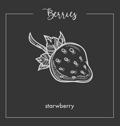 strawberry with small stem monochrome berry sepia vector image
