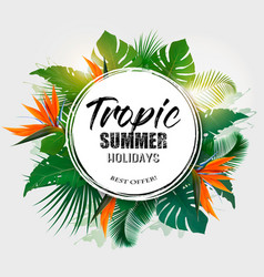 Summer holiday background with tropical plants vector