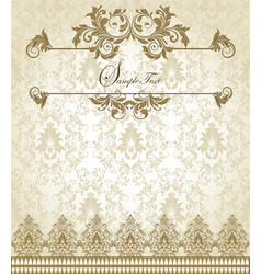 Vintage Lace vector image vector image