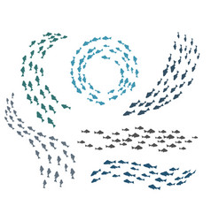 small fish groups vector image