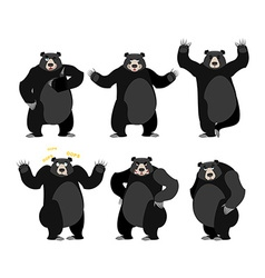Baribal American black bear set Grizzly various vector image