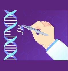 crispr cas9 gene editing tool genome edits human vector image