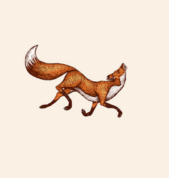 Fox in a jump pose animal with fluffy tail vector