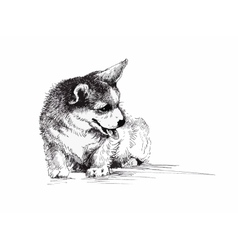 Puppy dog hand drawn black and white vector image