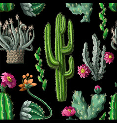 seamless pattern with cactus and flowers vector image