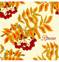 Seamless texture autumn branch of rowan leaves vector