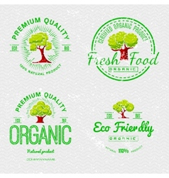Set Organic Natural Ecology stickers vector
