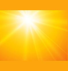 sun rays yellow backgroun vector image