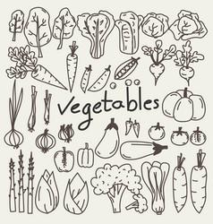 set of hand drawn vegetables doodles vector image