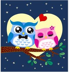 owl in love vector image vector image