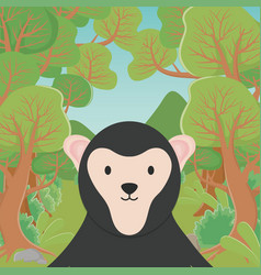 cute animal sloth bear cartoon in forest vector image