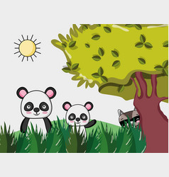 cute panda bears vector image