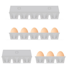 egg in box set colored vector image