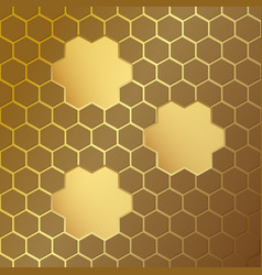 Honeycomb pattern with frames vector