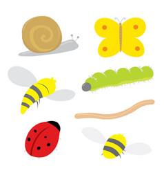 Insect bug snail ladybird butterfly bee cartoon vector