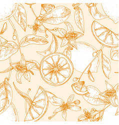 monochrome seamless pattern with fresh lemons vector image