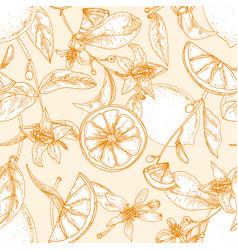 Monochrome seamless pattern with fresh lemons vector