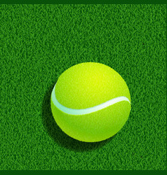 tennis ball isolated on white background vector image