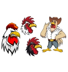 Cartoon roosters or cocks vector image