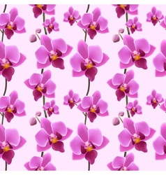 Orchid blossom seamless pattern vector image