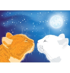 Two beloved cats on the night sky background vector image