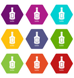 alcohol bottle icons set 9 vector image