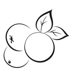 Apples with Leaves Black Pictogram vector image