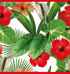 hibiscus and tropical leaves white background vector image