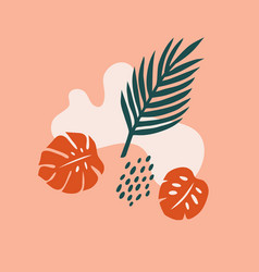 trendy summer background with tropical leaves vector image