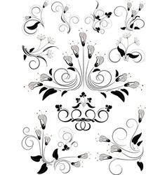 Variants flourishes decorative details vector