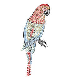 decorated parrot bird vector image