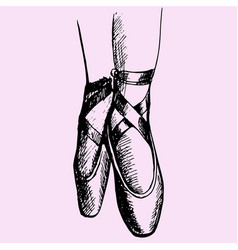Ballerina legs shoes vector