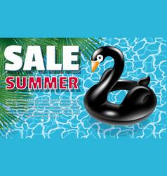 black swan banner vector image