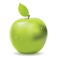Fresh green apple vector image