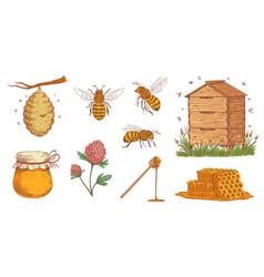 hand drawn honey bee beekeeper engraving bees vector image