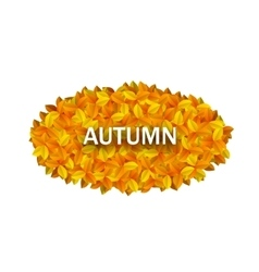 Oval Frame from Autumn Orange Leaves vector image