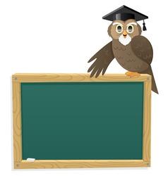 owl blackboard vector image
