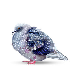 Pigeon bird isolated watercolor colorful vector