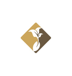 Seed bean farm plant organic logo vector