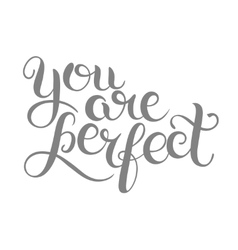 You are perfect hand lettering inscription vector