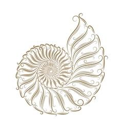 Sketch of seashells vector image vector image