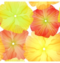 seamless primula flowers pattern vector image