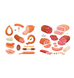 different types of meat products set isolated set vector image