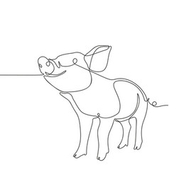 one line drawing pig black and white vector image