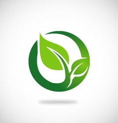 green leaf round ecology logo vector image