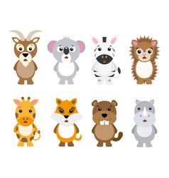 set animals vector image vector image
