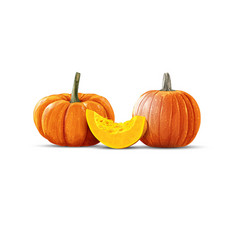 Art pumpkins in vector